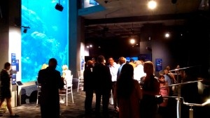 AWards banquet lighting rentals at south carolina Aquarium