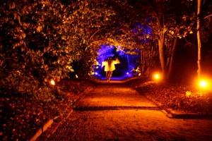 Charleston event lighting design by AV Connections at Middleton Pleace